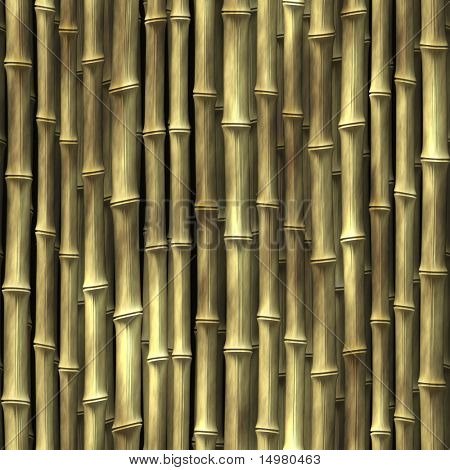 Bamboo plant stems vegetation seamless background wallpaper
