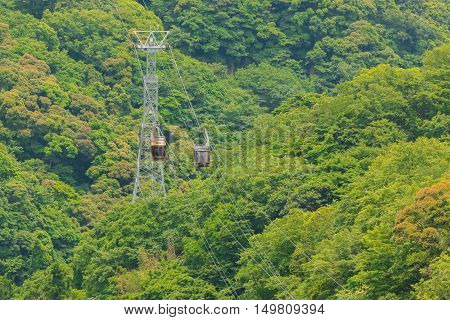 Aerial View Of The Forest With Ropeway.