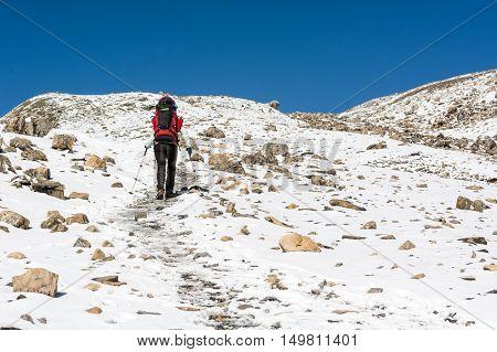Female trekking in a snowy mountain landscape. Annapurna circuit reaching Thorong La pass.