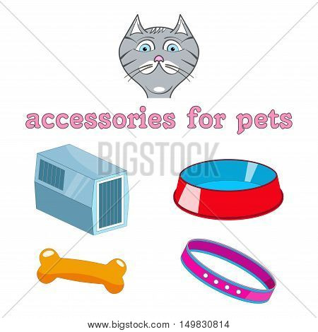 vector cartoon accessories for animals. Cat, bowl, collar, carrier animal, bone