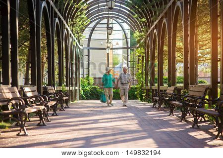 Senior couple walks along alley. Man and woman holding hands. We met long time ago. Romantic place in the park.