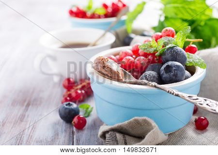 Delicious chocolate dessert with berries and mint served in ramekin. Copy space