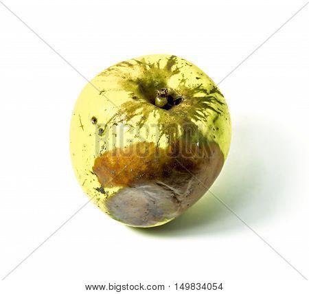 Rotten fruit Apple shot isolated on white background