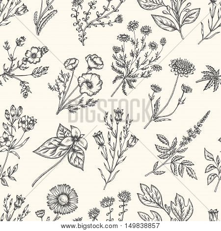 Wild flowers and herbs. Seamless floral pattern. Botanical drawing engraving style. Harebell, trillium, scabious, california poppy, daisy, chamomile. Vector vintage colorful illustration