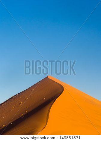 Dune 45 in the Sossusvlei area of the Namib Desert in Namibia.