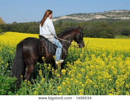 Pferd und Teen