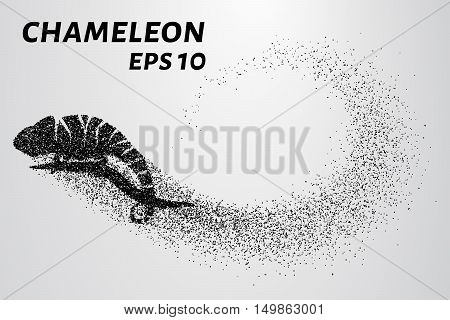 Chameleon particle. The silhouette of a chameleon is made up of little circles.