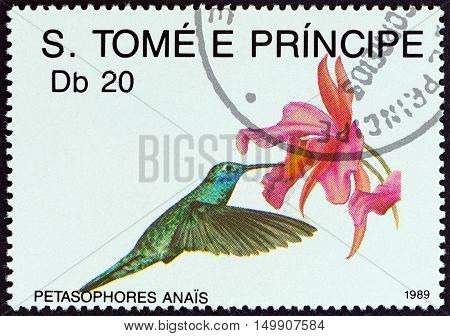 SAO TOME AND PRINCIPE - CIRCA 1989: A stamp printed in Sao Tome and Principe from the