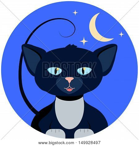 Halloween vector illustration with cat. White paw kitten in round blue background with moon and stars. Mysterious night of autumn celebration. Fall seasonal festival. Halloween cartoon character icon