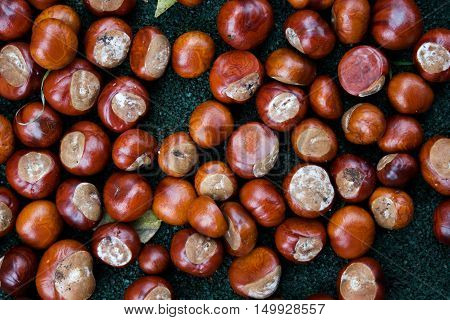 Chestnuts, Roasted Chestnuts, Brown Background, Chestnuts On Table