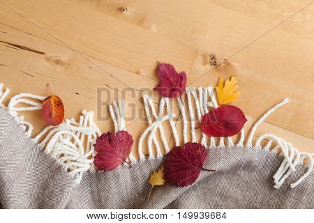 warm wool throw autumn red leaves on wooden background
