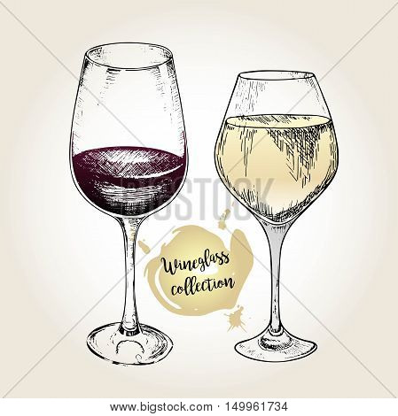 Vector set of wineglass collection. Engraved vintage style. Standard glasses for white and red wines. Isolated on grunge background. Use for restaurant cafe store food menu design.