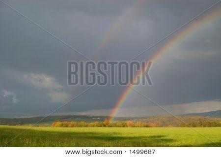 Rainbow36