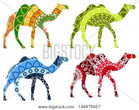 Bactrian camel Indian. Camel with a pattern isolated on white background. Set of vector illustrations.