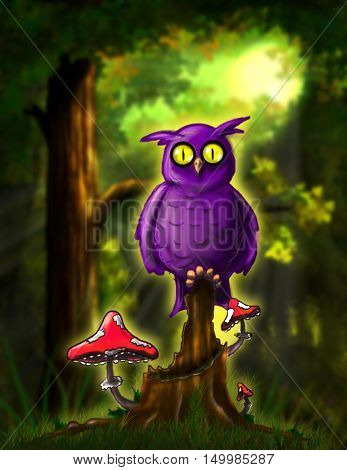 Illustration Open-Eyed Fairy Owl in the Forest