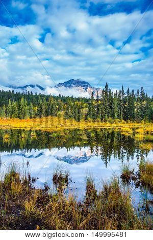 Warm autumn in Jasper Park, Canadian Rockies. Charming Patricia Lake amongst the evergreen forests, yellow bushes and distant mountains
