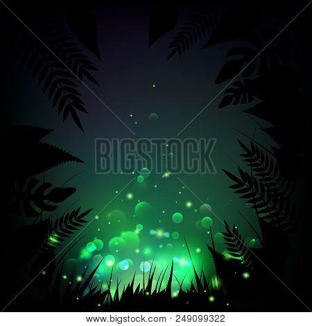 Stock Vector Illustration Fireflies Night