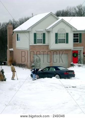 Winter Snow Digging
