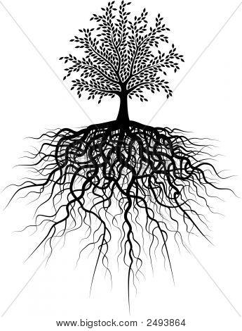 Árbol de la raíz