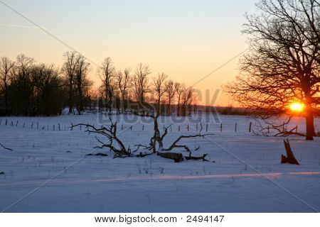 Snowy Fields At Sunset