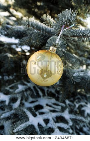 Christmas decorations on the frozen branches of a coniferous tree
