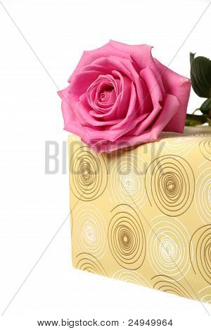a part of present and a pink rose