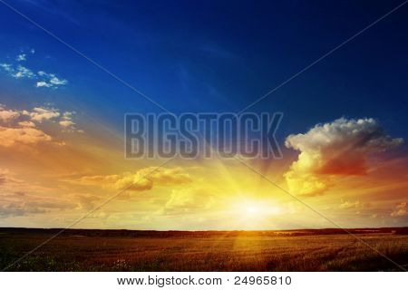 Sunset over a field.