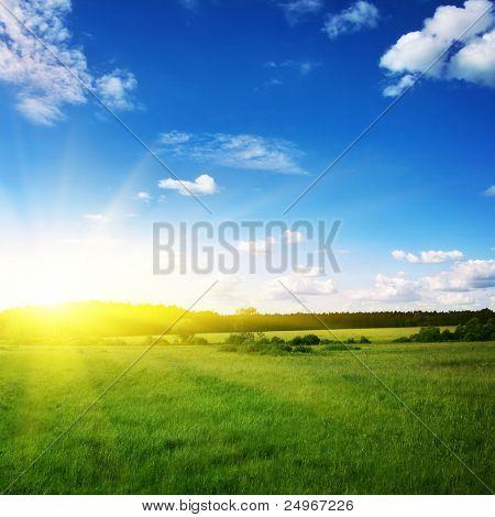 Schönen Sonnenuntergang und grüne Wiese.