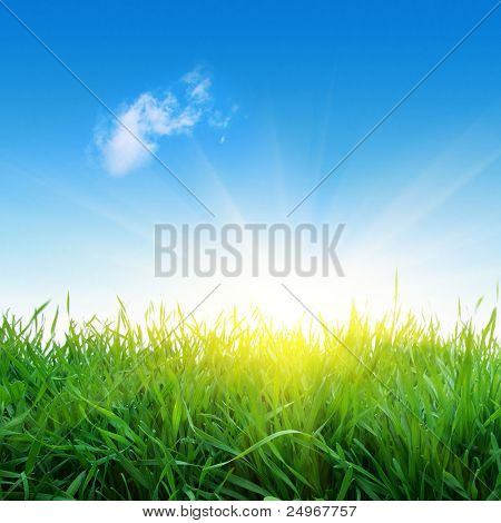 Green grass,single cloud in blue sky and sunlight.