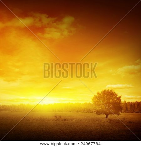 Sunset landscape.