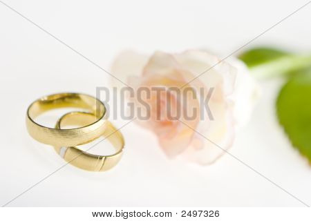 Wedding Bands With Rose On A White Background