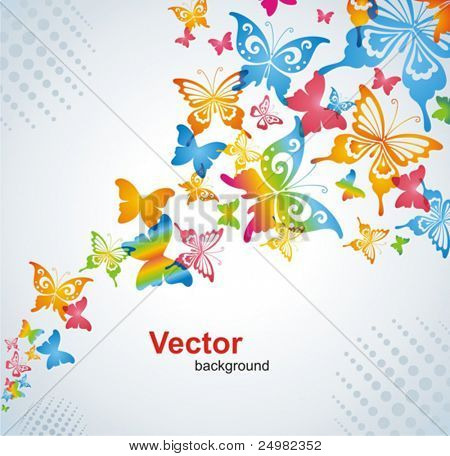 Colorful background with butterfly. Vector.