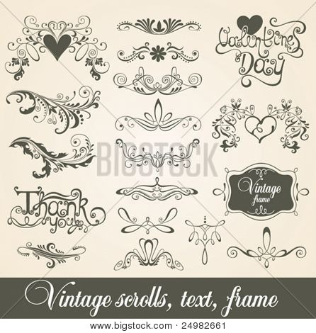 Vintage scrolls, text, frame. Design elements and page decoration.