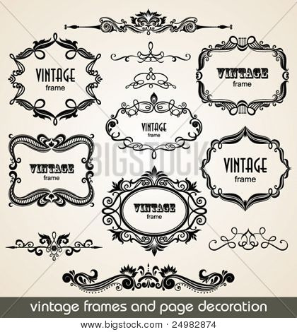 Vintage scrolls and frame. Design elements and page decoration. Set.