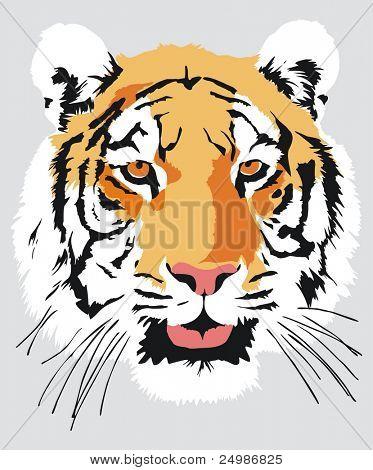 Head of a tiger, vector
