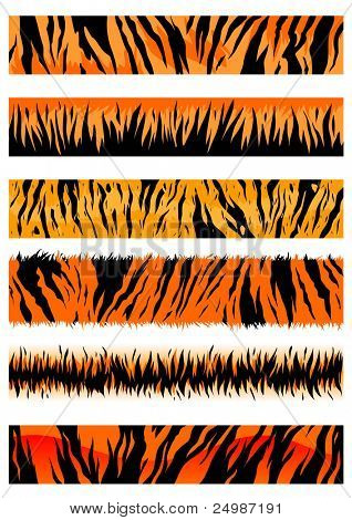 Tiger skin patterns