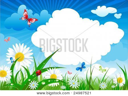 summer meadow  with space for text