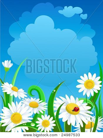 Beautiful  daisies under blue sky with space for text