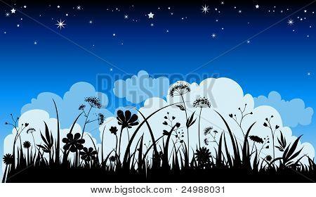 Summer night background