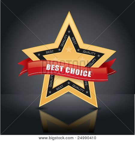 Best choice, vector gold star emblem with red label on it on studio background