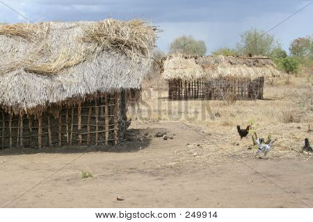 African Homes