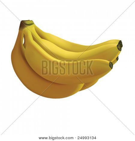Vector Photo-realistic Bunch of Bananas