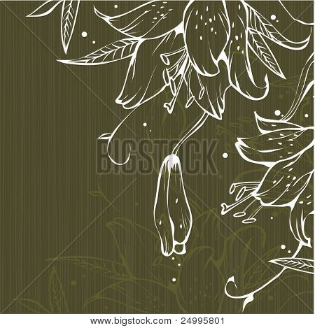 Simple floral background with madonna lily