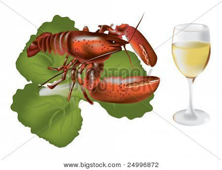Vector image of lobster with salad and white wine