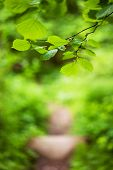 Footpath In The Foliar Forest, Nature Background With Copy Space poster