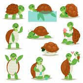 Turtle Vector Cartoon Seaturtle Character Swimming In Sea Or Ocean And Sleeping Tortoise In Tortoise poster