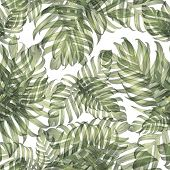 Palm Monstera Exotic Seamless Pattern. Green White Tropical Summer Background. Beach Jungle Leaves F poster