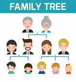 Family Tree, Diagram Of Members On A Genealogical Tree, Isolated On White Background, Cartoon Vector poster