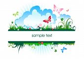 pic of summer fun  - summer meadow banner - JPG