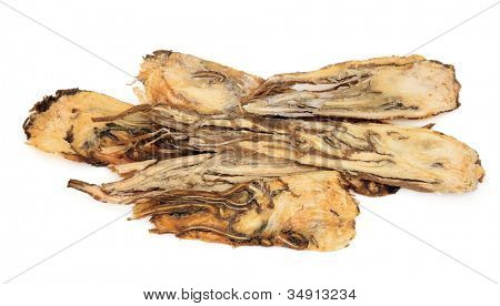 Angelica root used in traditional chinese herbal medicine  over white background.